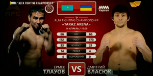 Турнир по ММА. «Alfa Fighting Championship»